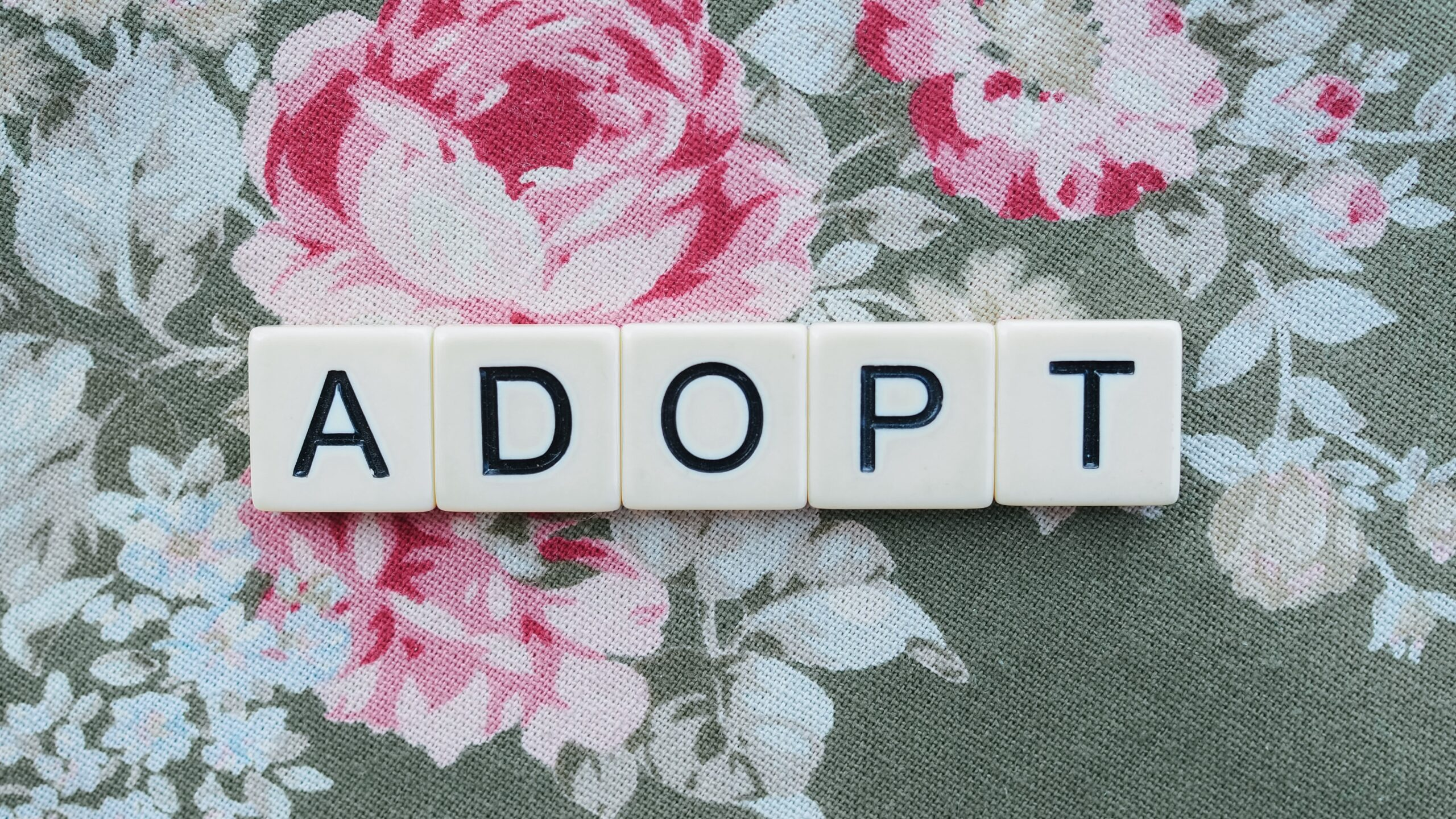 How Having the Right Attorney Can Make Your Adoption Go Smoother